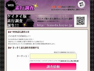 webdetective.jpg